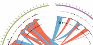 Visualising complex genomic rearrangements is key to advancing genetic knowledge.