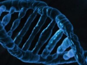 New MSc in Genetic and Genomic Counselling!