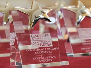 Engagement award for Wales Gene Park!