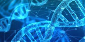 Rare Disease Research Gateway